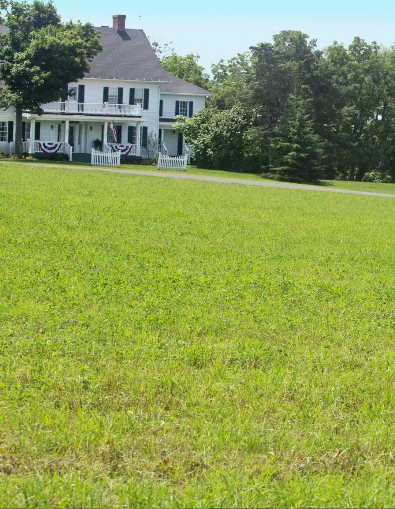 The Grounds at Captain Kinne House B&B, Ovid, NY
